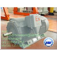 Quality YB560-800 Three-phase Induction High voltage Motors for sale