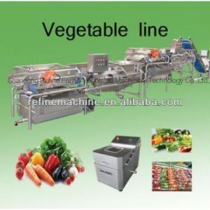 China Vegetable washing machine/potato peeling machine vegetable processing line leafy vegetables on sale