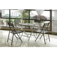 Quality Patio Furniture, Steel Dining Set (BZ-DS002) for sale