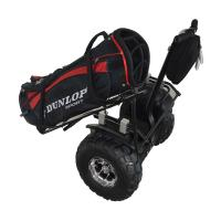 Quality Brand new electric golf scooter for adult for sale