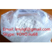 Quality Test E Testosterone Powder Source CAS 315-37-7 Testosterone Enanthate With High Purity for sale