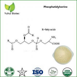 China phosphatidylserine,natural phosphatidylserine,high quality phosphatidylserine powder on sale