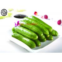 Quality Delicious Cucumber Cucumis Sativus , Miniature Cucumber Fruit Vegetable for sale