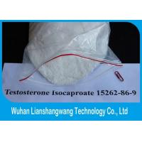 Quality GMP Effective Testosterone Anabolic Steroid Raw Powder Test Isocaproate CAS 15262-86-9 for sale