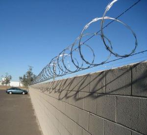 Quality CBT65 5kgs /coil 1 roll per carton razor barbed wire for sale