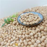 China Chinese Factory OEM All kidney Beans and 250-270pcs/100g or 8mm,12mm Yellow Chickpeas / Garbanzo / Cicer arietinum on sale
