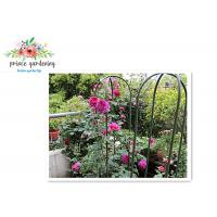 Quality Nursery House Garden Stake Solid Frame Flower Support Ushape Pipe for sale