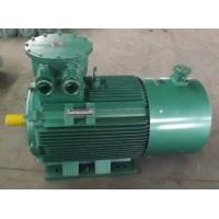 Quality China Promotion YB2 Explosion-proof Electric Motor for sale