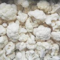 Quality IQF Frozen Cauliflower, diameter range from 3.0 cm to 5.0 cm for sale