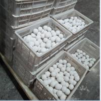 China SGS Certificated High Quality 95% Alumina Ceramic Grinding Media Ball From China for wet grinding on sale