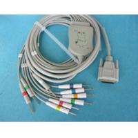 Quality EkG CABLE 10 LEADS direct from China (Mainland) for sale