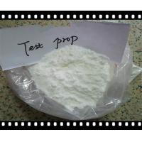 Quality Pharmaceutical GMP Grade Testosterone Phenylpropionate CAS 1255-49-8 for sale