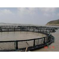 Quality Fish Net Cage for sale