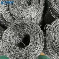 China Q195 Steel Farm Fence Highway Protection Galvanized Barbed Wire on sale