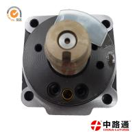 Quality distributor head sale 1 468 336 457 for IVECO with GCr15 for sale