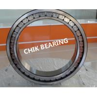 Quality Double Row Full Complement Cylindrical Roller Thrust Bearing high load capacity for sale