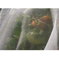 Quality Greenhouse Anti Insect Mesh Netting Pure HDPE 50 Mesh 120 Gsm Insect Screen Mesh for sale