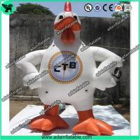 Quality Event Inflatable Rooster,Inflatable Rooster Cartoon,Inflatable Rooster Costume for sale