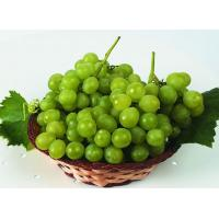 Quality Paclobutrazol 95% TC/use for Grape/fruit for sale