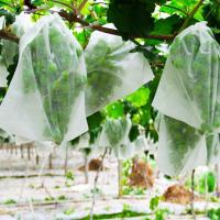 China Non Woven Fabrics For Planting Bags for sale