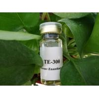 Quality Nandrolone Undecylate for Muscle Bodybuilding - Steroid Injectable Oil / Powder for sale
