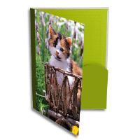 Quality durable pp lever arch file folder for sale