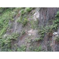 Quality Galvanized Hexagonal Wire Mesh Hexagonal For Bank / Mountain Protection for sale