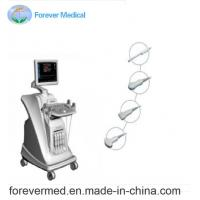 China Semi Vertical Trolley Color Doppler Ultrasound on sale