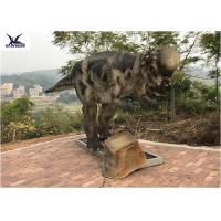 Quality Pachycephalosaur Robotic Dinosaur Garden Ornaments Soft And Smooth Surface Treatment for sale