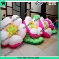 Quality Inflatable Flower,Flower Inflatable,Customized Inflatable Flower for sale