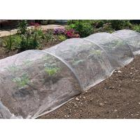 Quality Agricultural Garden Crops Insect Mesh Netting Vegetables Flowers Fruits Cover Insect Proof for sale