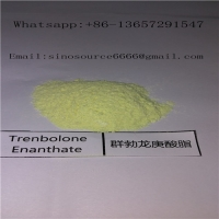 Quality Powerful Trenbolone Enanthate Powder , Cutting Cycle Steroids Supplements Yellow Powder for sale