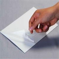 Quality PE Clear Protective Film Tape , PVC / Plastic Sheet Protective Adhesive Film Anti Scratch for sale
