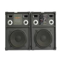 China 12 Inch Subwoofer Portable Bluetooth PA Speakers 2 Way Mic Input For Karaoke on sale