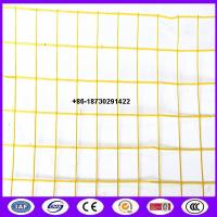 Quality Yellow color PVC coating Holland wire mesh fence 30mmx30 mm Hole opening  in 1.2 meter height for sale