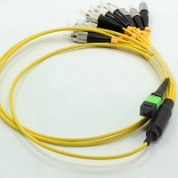 Quality 100G SFP MPO MTP Cable 12 Core MPO Adapter Optical Cable for sale