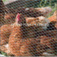 Quality Chicken Fence for sale