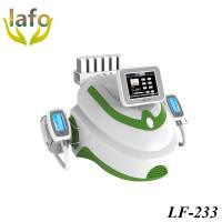 Quality 2 Cryo handles Lipo Laser Cryolipolysis Freezing Fat Slimming machine with CE for sale