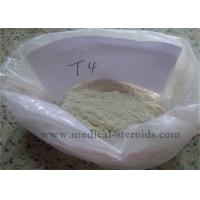 Quality Weight Loss Steroids T4 L-Thyroxine Sodium Salt For Muscle Growth for sale