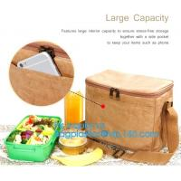 Quality Custom Eco friendly tyvek Lunch bag Insulated Cooler bag,tyvek kraft paper insulated aluminum foil lunch box bag with sn for sale