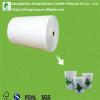 Quality single side PE coated paper cup paper for sale