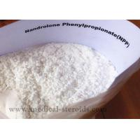China Nandrolone Phenypropionate Growth Hormone Steroid on sale