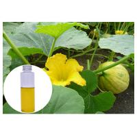 Quality Pumpkin Seed Natural Plant Extract Oil Liquid Improving Males' Sex Function for sale
