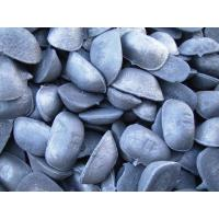 China pig iron product on sale