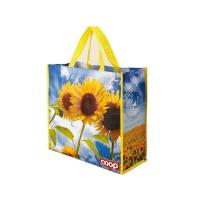 Quality Simple Design PP Non Woven Shopping Bags , Laminated Non Woven Fabric Carry Bag for sale