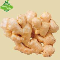 China the wholesale quantity of dried ginger fresh ginger is very cheap on sale