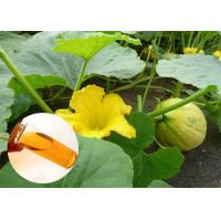 Quality Pumpkin Seed Oil Prevent Prostate Natural Dietary Supplements Food Grade for sale