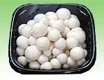 Quality White Shimeji Mushroom for sale