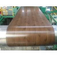 Quality Hot Rolled Galvanized Steel Coil , Color Coated Pre Painted GI Sheet G500 G550 for sale