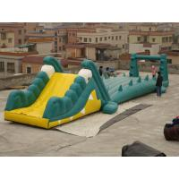 Great Fun Inflatable Crocodile Water Slide for Water Paks